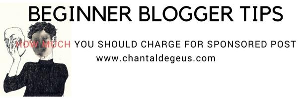 BEGINNER BLOGGER TIPS (9).jpg