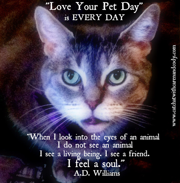 cody love your pet day