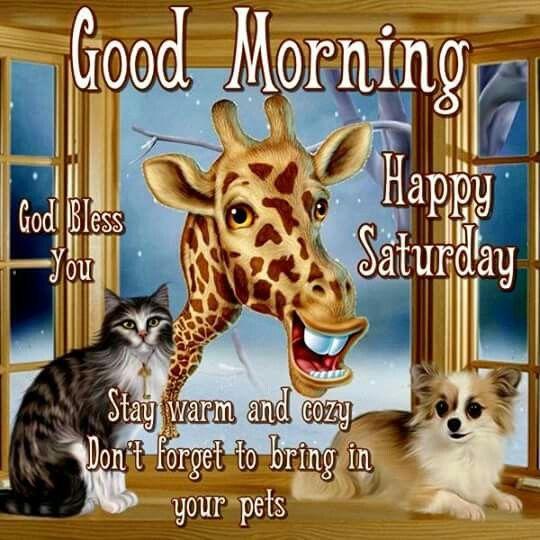 277559-Cute-Animals-Good-Morning-Saturday-Quote